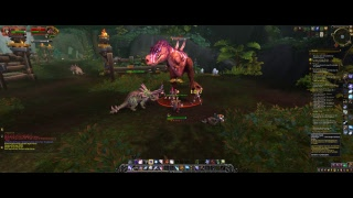 WOW: Battle for Azeroth Leveling Rouge SWISS
