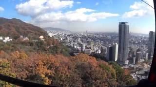 神戸布引ハーブ園、12月7日まだまだ、紅葉が楽しめます。 好天で暖かく...
