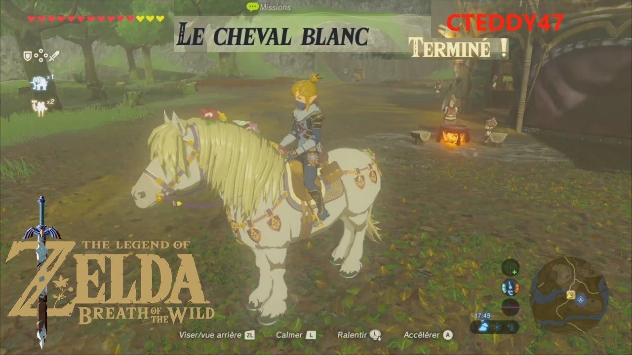Le cheval blanc cheval princesse zelda harnachement crini re sur zelda breath of the wild - Princesse cheval ...
