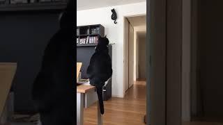 Tick tock kit kat