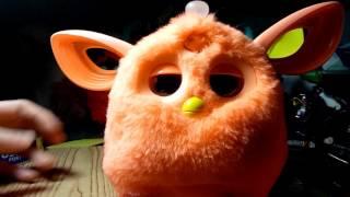 Furby connect glitch