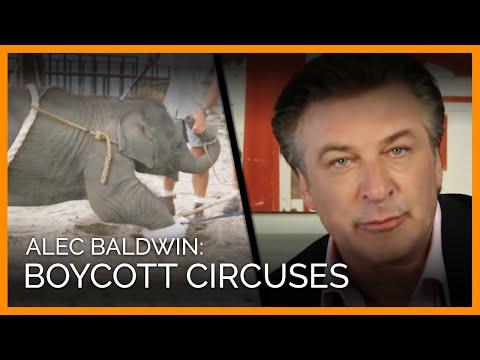 Alec Baldwin: Boycott Circuses That Use Animals