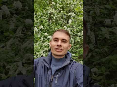 С Днем Рождения, Максим Головков!