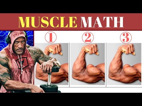 How Many Workouts a Week to Build Muscle? 2019 UPDATE