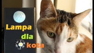 74. Lampa dla kota (czyli co nieco na temat oszczędzania energii w Arduino)