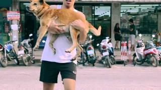 The Joy of Giving: When I bathe stray dogs (เมื่อผมอาบน้ำให้หมาจรรอบๆหมู่บ้าน)