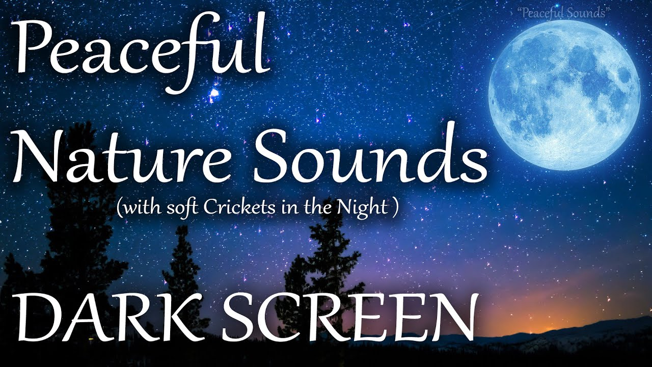 10 HOURS of Relaxing Nature Sounds. Peaceful night with soft Crickets. DARK SCREEN to fall asleep