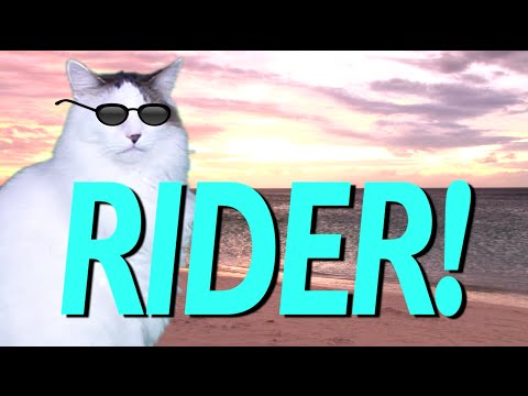 HAPPY BIRTHDAY RIDER! - EPIC CAT Happy Birthday Song