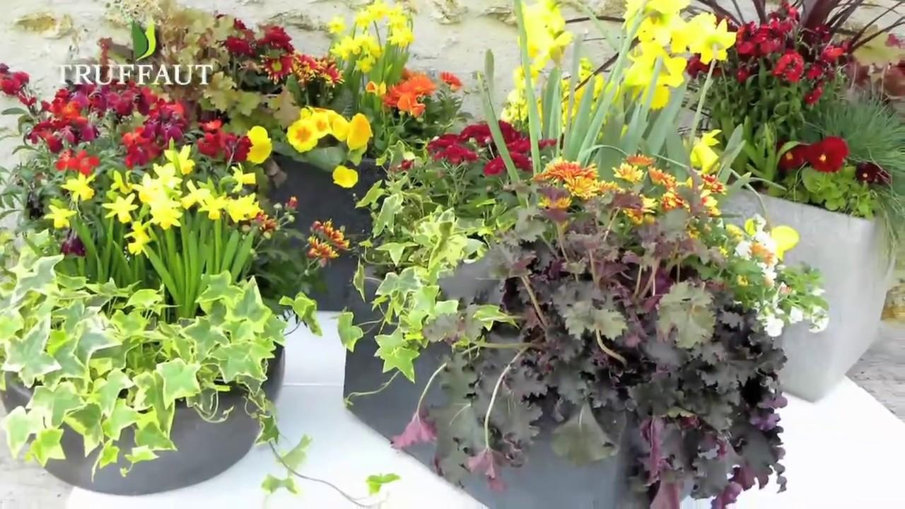 faire des jardinieres fleuries de saison truffaut