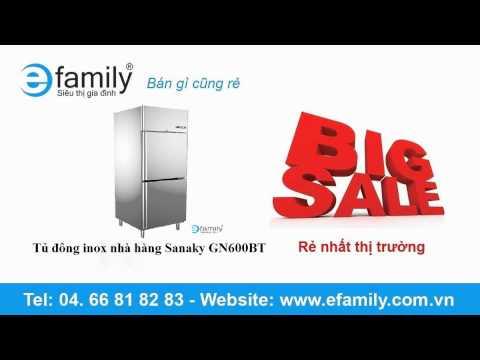 Tủ đông inox nhà hàng Sanaky GN600BT