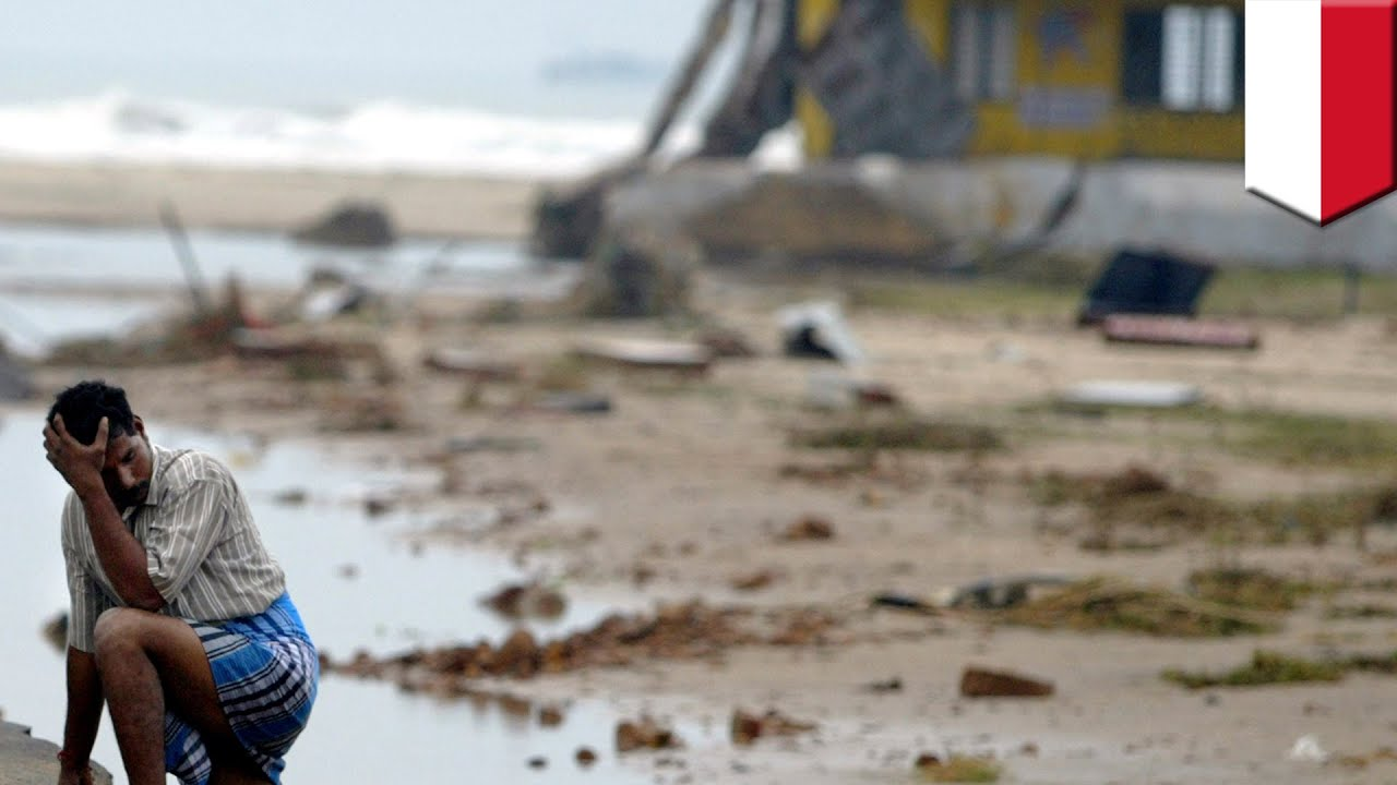 a report on the indian ocean tsunami The 2004 indian ocean tsunami is among the worst natural disasters on record - leaving hundreds of thousands dead and millions displaced from their homes these are just some of the shocking facts.