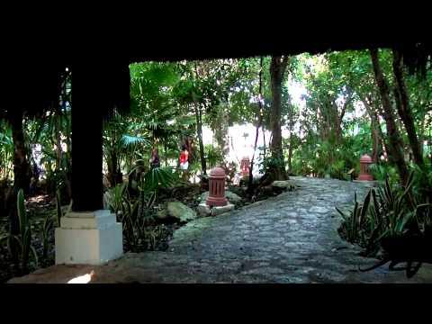 Beach, Jungle, Monkey's - Iberostar Tucan Riviera Maya Mexico - YouTube