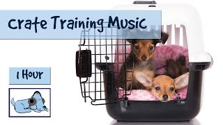 Once properly crate trained, your dog will see their crate as a saf...