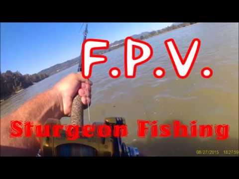 FPV... Sturgeon Fishing!
