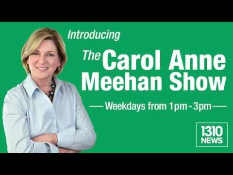 Lyme Disease interview with Carol Anne Meehan