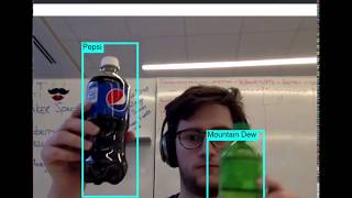 Real Time Object Detection App - Biosciencenutra