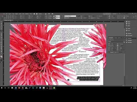 InDesign How-to: Advanced Text Wrapping with Alpha Channels