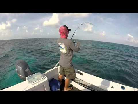 Cocos Keeling Islands Stickbaiting