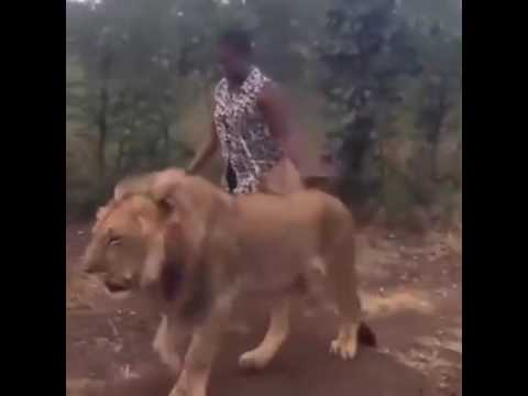 A woman and a pet lion