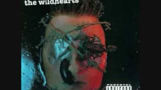 The Wildhearts - My Baby is a Headfuck