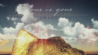 Gone Is Gone - Fast Awakening