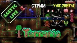 видео Игры Террария играть онлайн, Terraria бесплатно