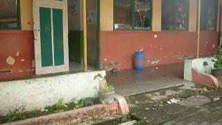 Video SD Kanisius Pekunden, Semarang download MP3, 3GP, MP4, WEBM, AVI, FLV Desember 2017