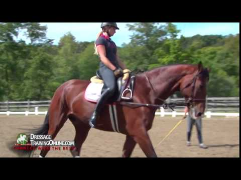 Dressage With Catherine Haddad - Go-To Lesson - Beginner