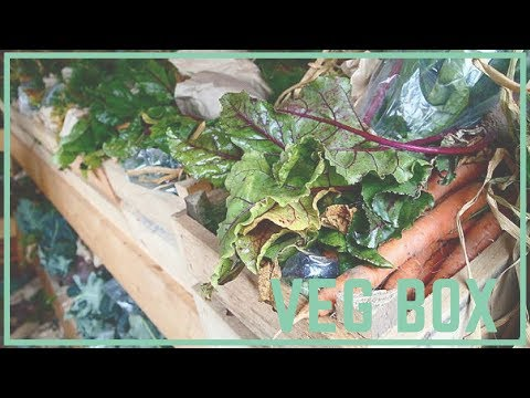 The Rise of the Organic Veg Box