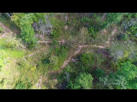 $500 Down Acreage By Springfield, MO - InstantAcres.com - ID#CG18