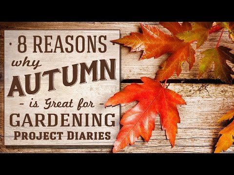 ★ 8 Tips: Gardening in the Autumn / Fall (Gardening for Beginners)