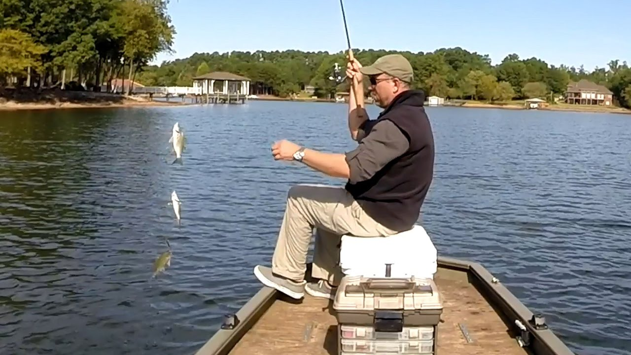 1bellcurve vidmoon for Lake norman bass fishing