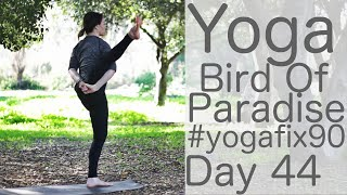 Yoga to Bird of Paradise (with a heckler!)  Day 44 Yoga Fix 90 with Lesley Fightmaster