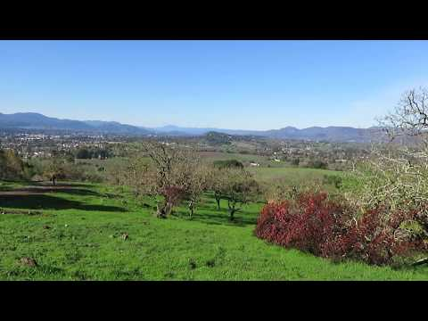 View of Napa Valley from Skyline Wilderness Park - Napa, California