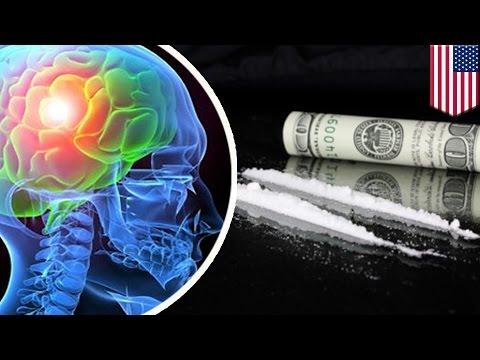 โคเคนทำให้เซลล์สมองกินตัวเอง ทีมวิจัยจอห์น ฮอปกินส์เผย