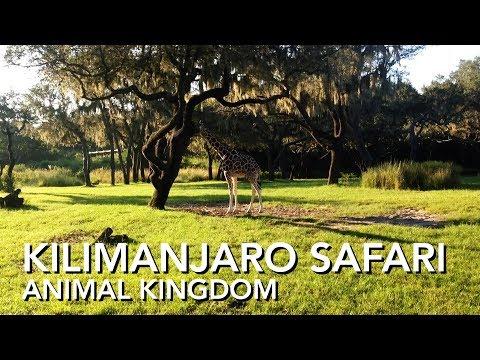 Kilimanjaro Safari - Animal Kingdom - Full Ride [HD]