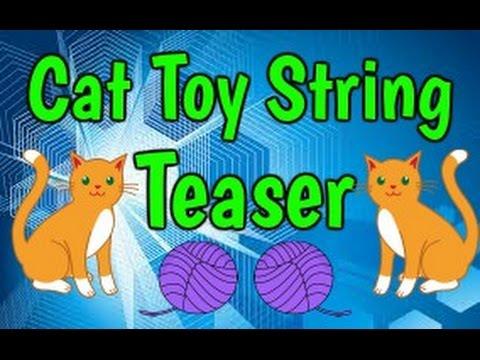DIY Cat Toy - String Teaser