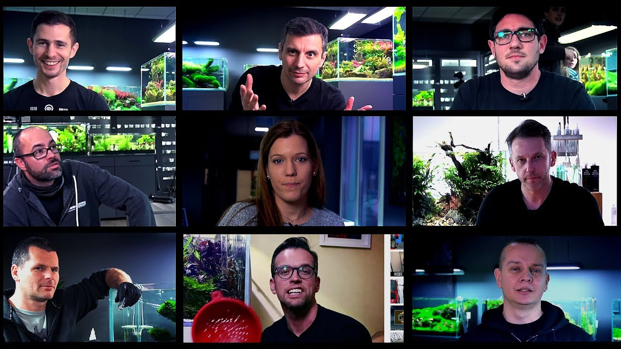 AQUASCAPING TIPS FOR BEGINNERS IN 2019 - YouTube