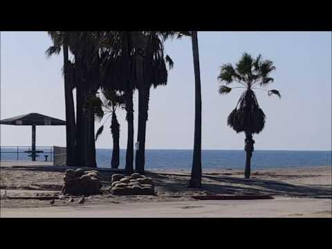 Driving Through Venice Beach California