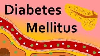 Diabetes Mellitus And Insulin
