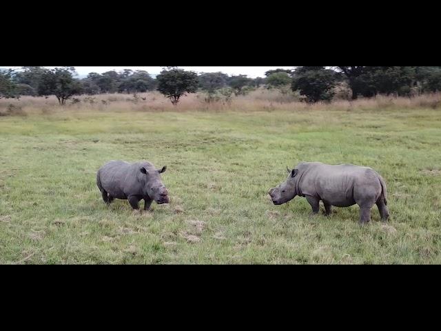 Zimbabwe A World Of Wonders Destination Video 2019 (Long Version)