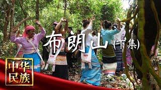 《中华民族》 20190527 布朗山 下集| CCTV