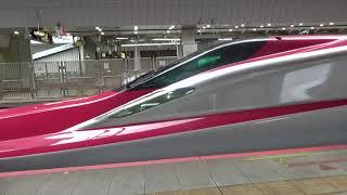 E5系U19編成+E6系Z2編成 東北新幹線 はやぶさ・こまち11号 発車 東京駅