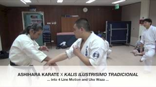 Street Tactics: Self-Defence Ashihara Karate Style