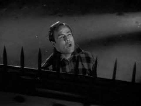 On the Waterfront Clip