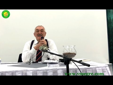 Video Conference of Vladimir Megre in Prague, part I
