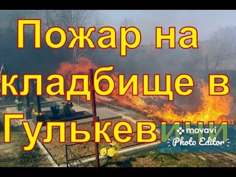Гулькевичи, центральное кладбище,горят могилы.