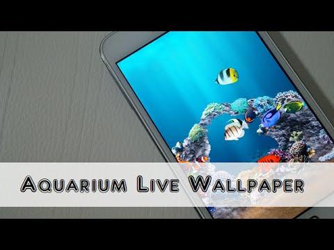 Top 5 Aquarium Live Wallpaper For Android - November 2015
