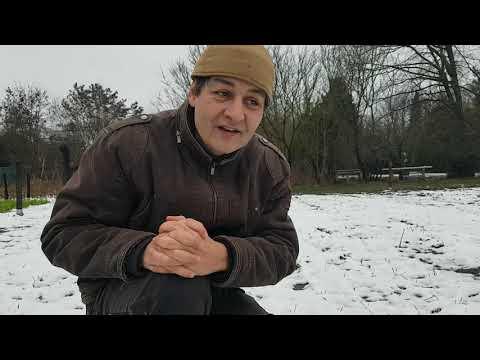 """Schnee auf dem Feld! Warum """"Auswintern""""?"""