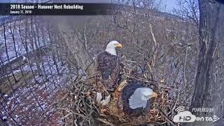 2018 Hanover Eagles - Nest Rebuilding Time-Lapse